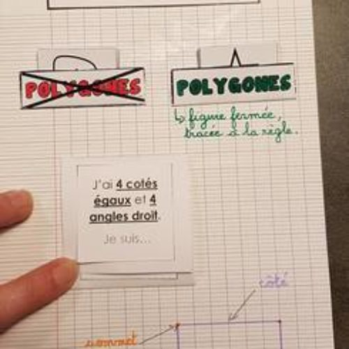 LAM: les polygones