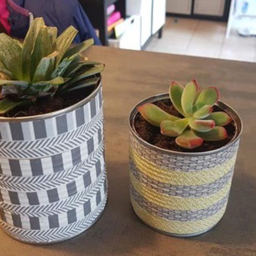 Planter autre chose que des haricots en classe