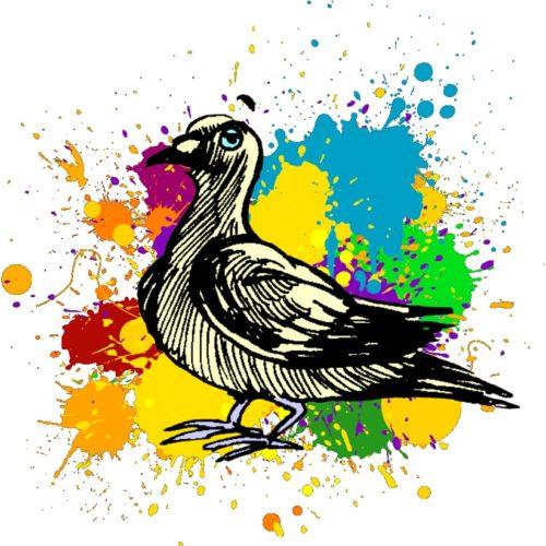 Cartes postales du Pigeon voyageur